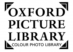 Oxford Picture Library